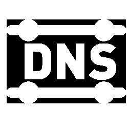 dns.png